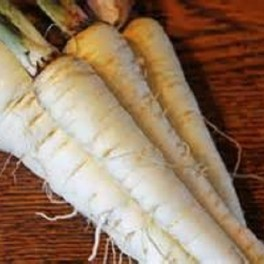 Parsnip, Harris Early Model