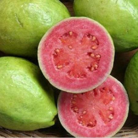 Pink Flesh Guava Seeds
